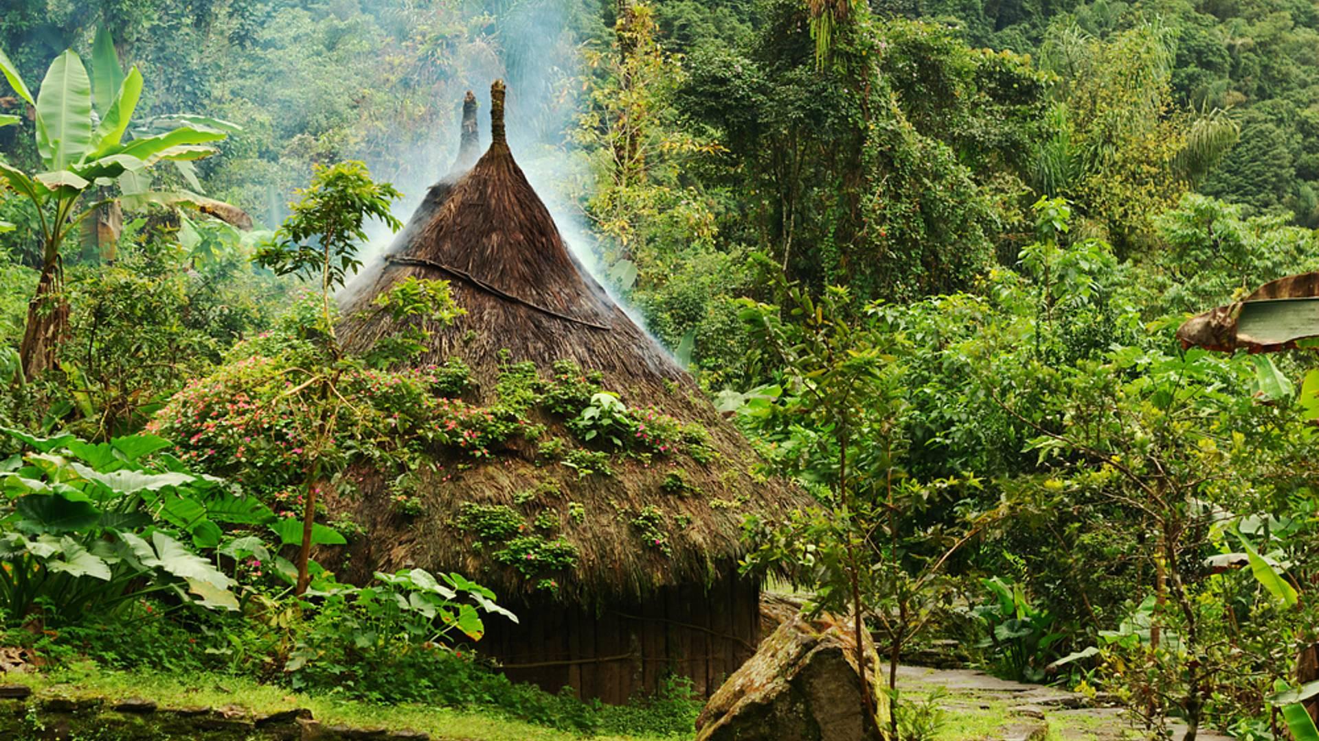 Rencontre Kogui et réalisme magique