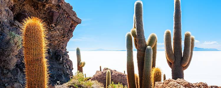Perù e Bolivia: il fascino del deserto di sale di Uyuni ed il misterioso Machu Picchu