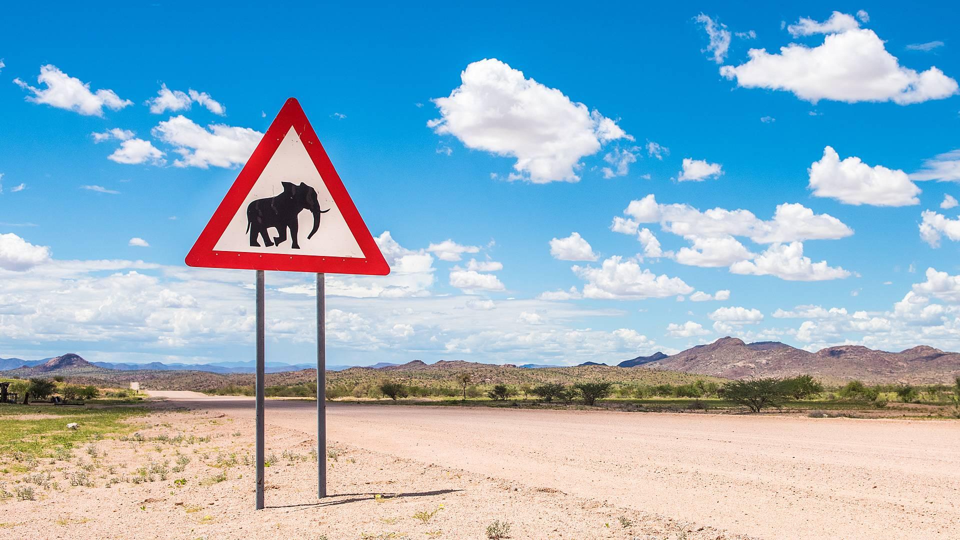 Namibia e Botswana in self drive