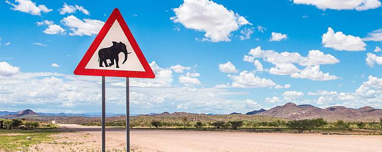 Namibia e Botswana in self drive