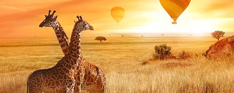 Aventura Safari y Cultura Masai
