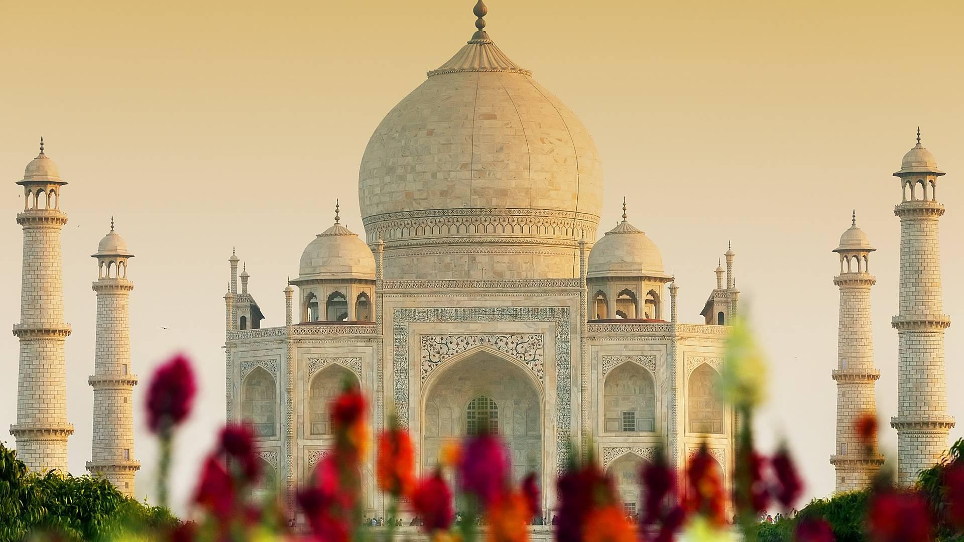 Palastrundreise durch Rajasthan
