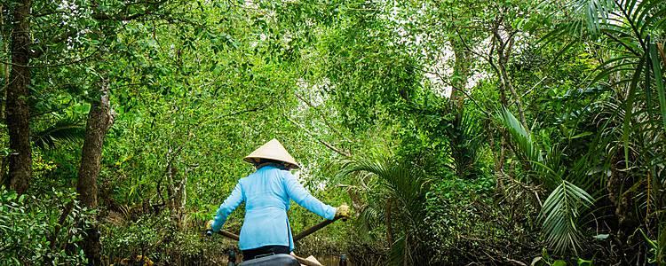 Descendencia vietnamita
