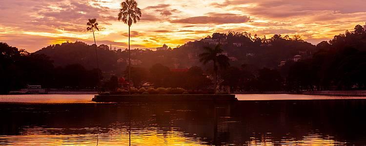 Un invierno bajo el sol cingalés