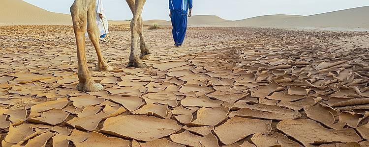 Aventura por el gran Desierto Erg Chegaga
