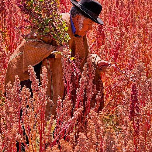 L'autre pays des Incas - Lima -