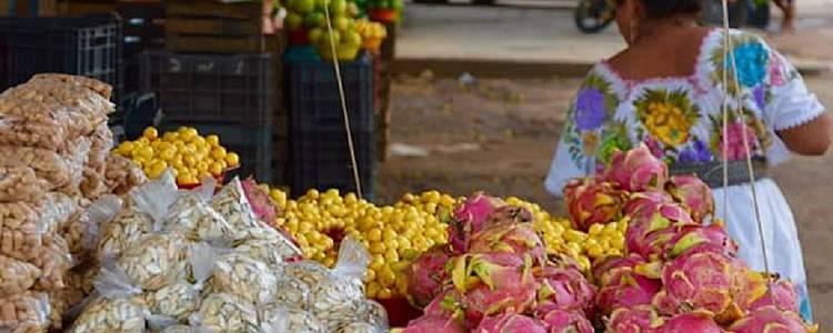 Immersion au coeur des traditions yucatèques