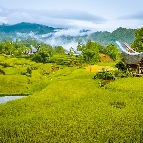 Bali, Sulawesi, Lombok et les îles Gili -