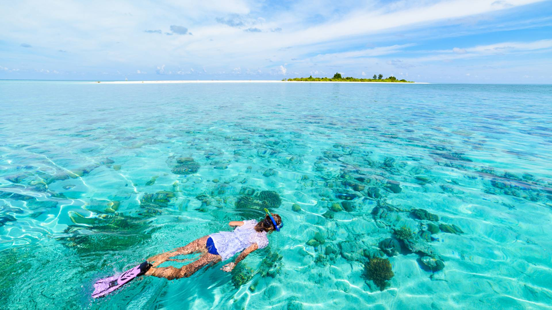 Aventure sur Sulawesi et l'archipel reculé de Wakatobi