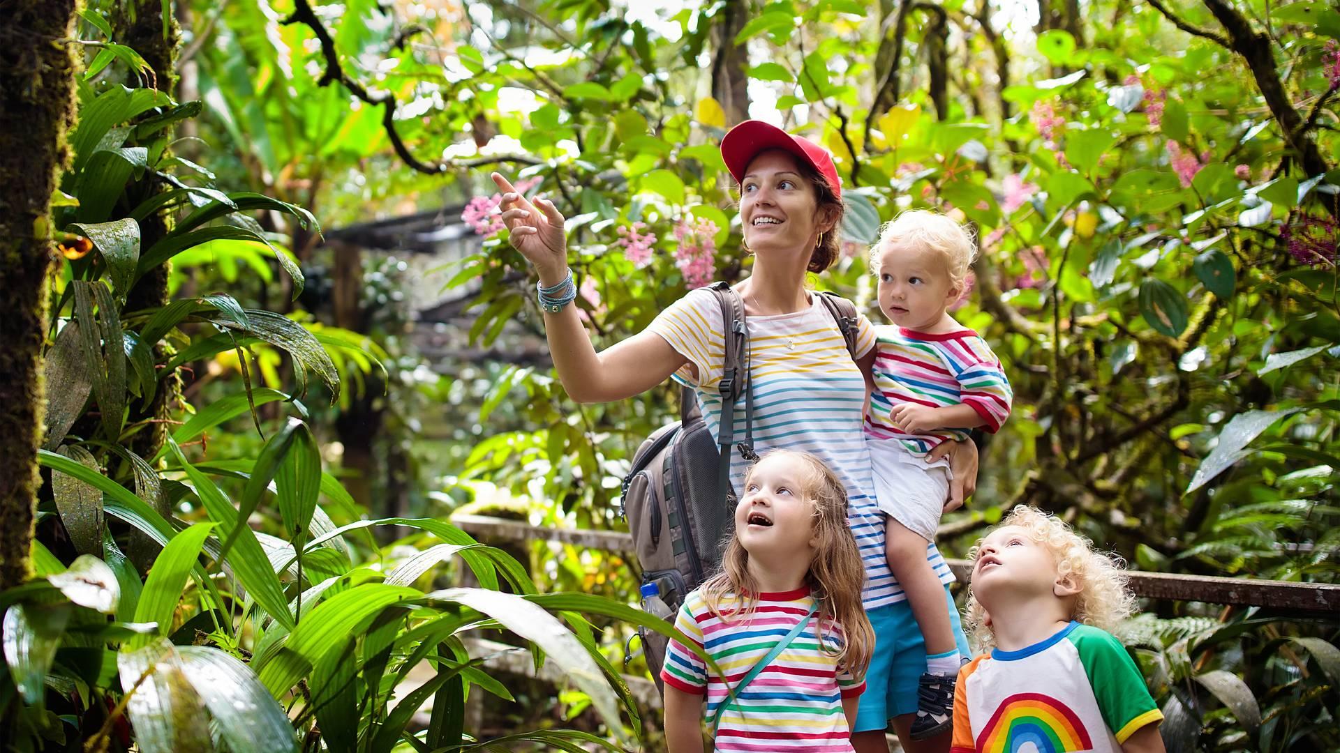 Mistico Borneo in famiglia