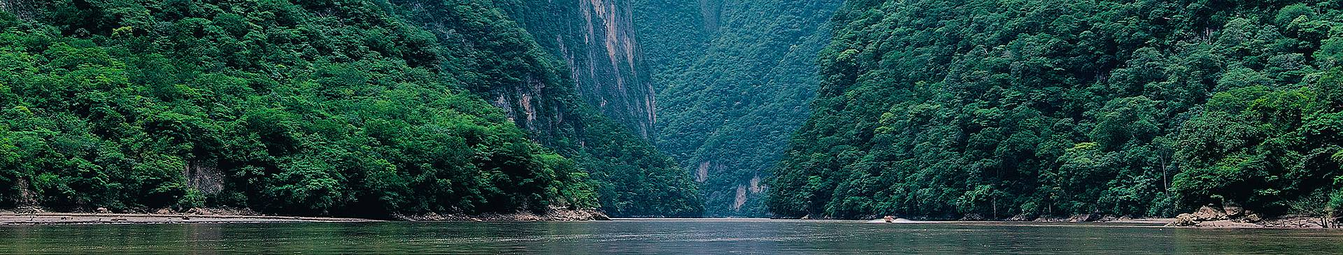 Voyage nature au Mexique