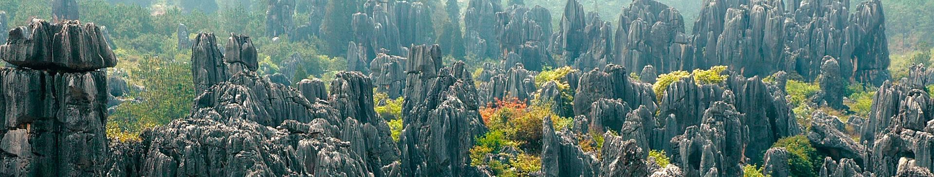Voyage nature en Chine
