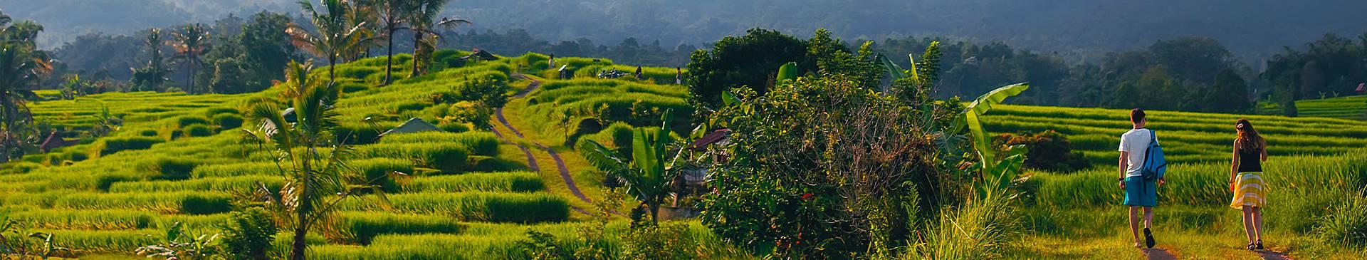 Voyage de noces à Bali