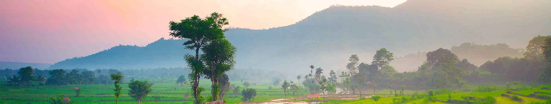 Voyage nature à Bali