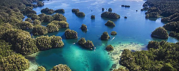 Erlebnisreiche Wanderungen auf West Papua