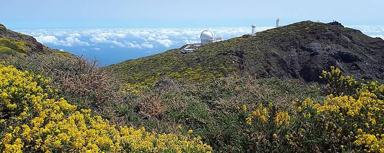 La Palma, isla bonita à pied et en liberté