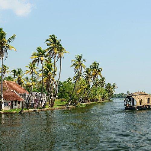 Epices et parfums du Kerala -