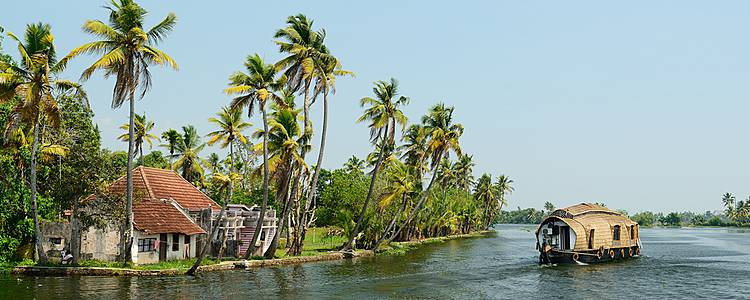 Epices et parfums du Kerala