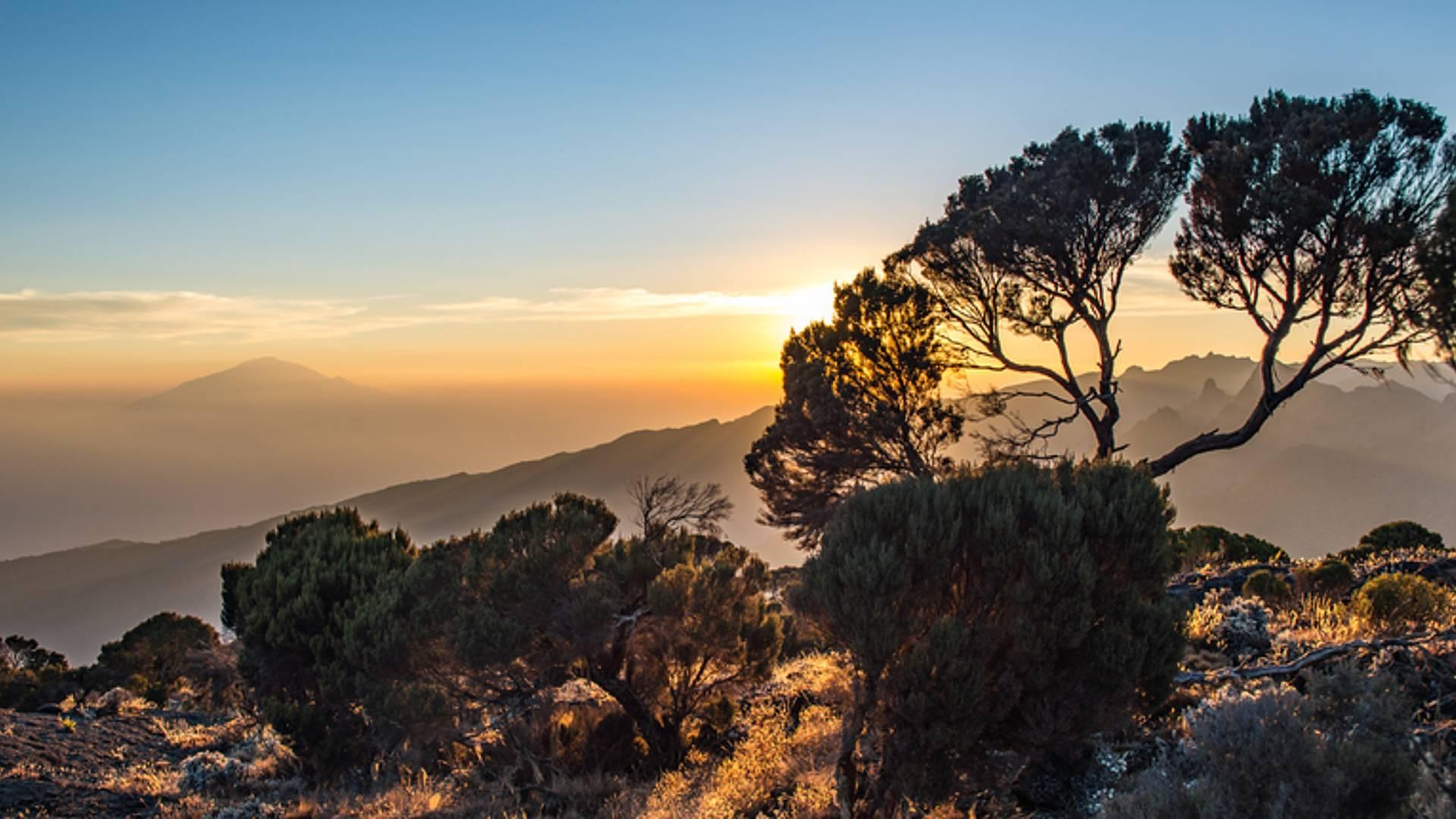 Ascension du Kilimandjaro-Voie Machame en petit groupe