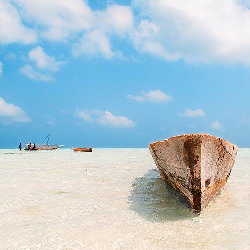 Safaris d'exception et Zanzibar -