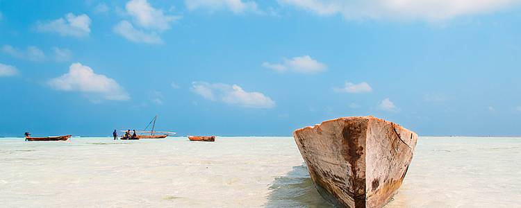 Safaris d'exception et Zanzibar