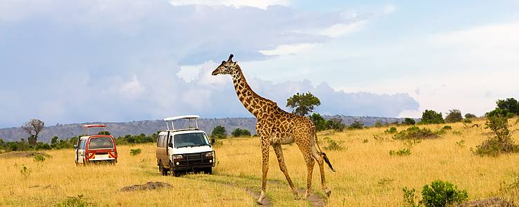 Cultural Safari in Nairobi - Nyeri - Samburu - Masaai Mara