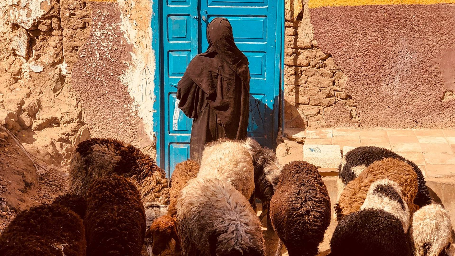 Rencontres Nubiennes
