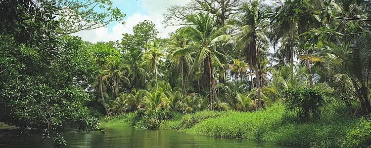 Jenseits von Panama