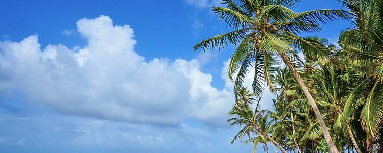 Strandtage auf den San Blas Inseln