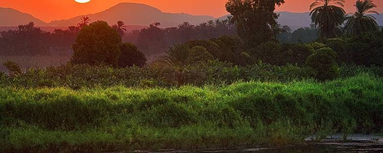 Flânerie au bord du Nil