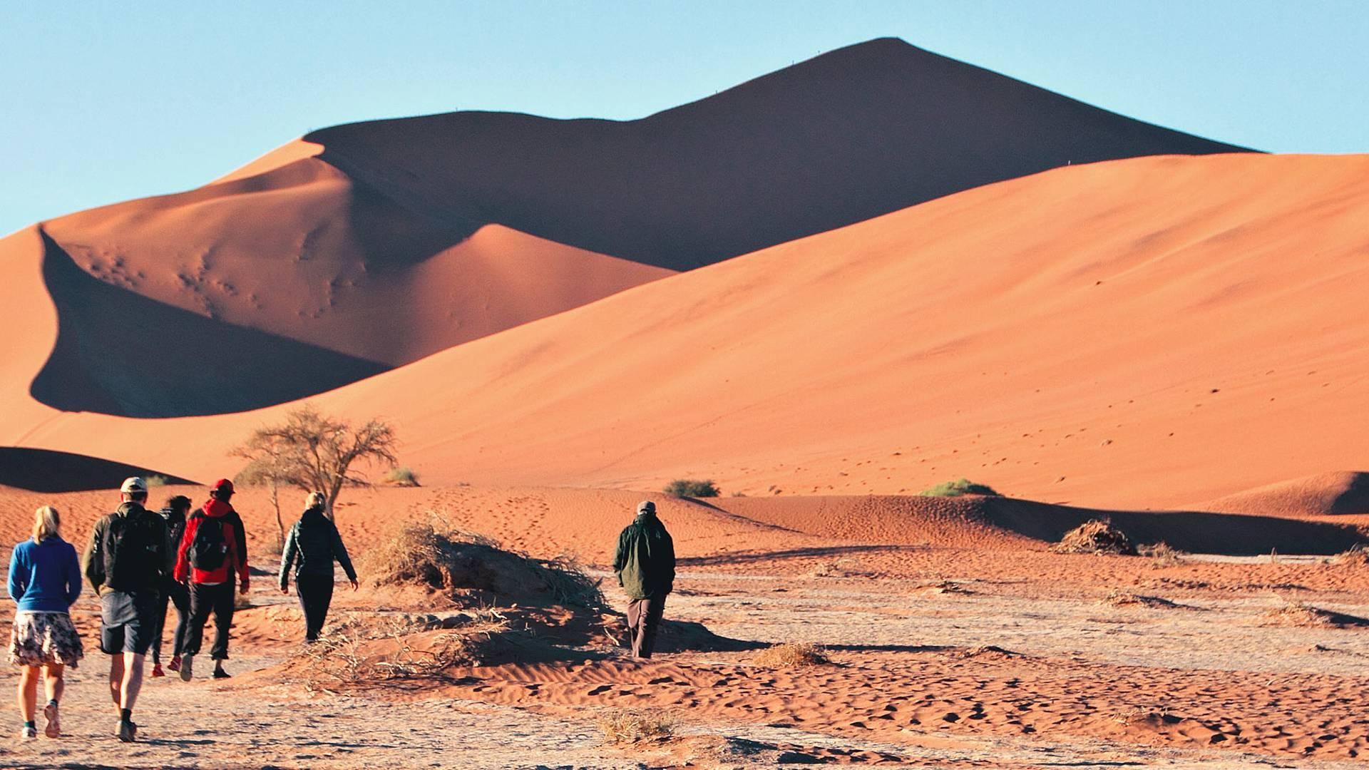 Glanzpunkte im Süden Afrikas