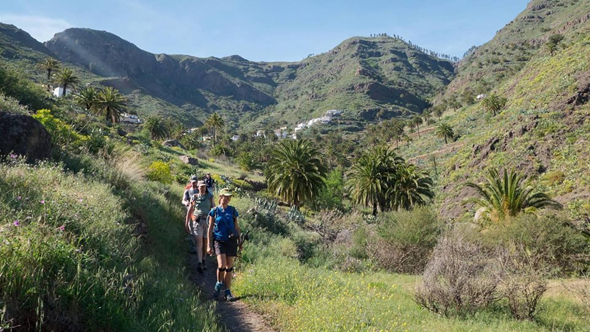 Tenerife et la Gomera, randonnées paradisiaques en petit groupe