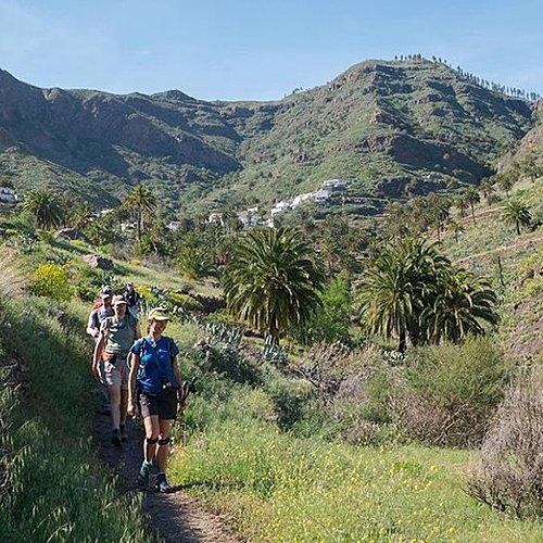 Les essentiels Tenerife et La Gomeraen groupe - Ténérife -
