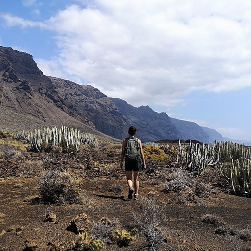 Tenerife, La Gomera, La Palma, trio magnifique - Ténérife -