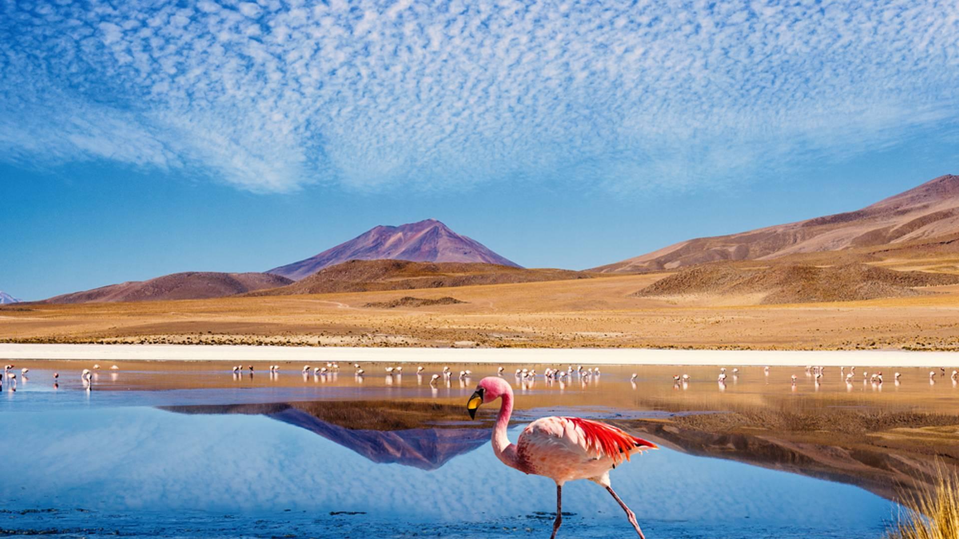 Combiné de rêve Pérou-Bolivie