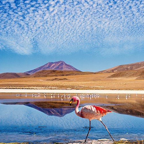 Combiné de rêve Pérou-Bolivie - Lima -