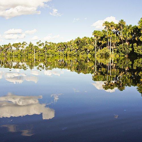 Terres sacrées et Amazonie - Lima -