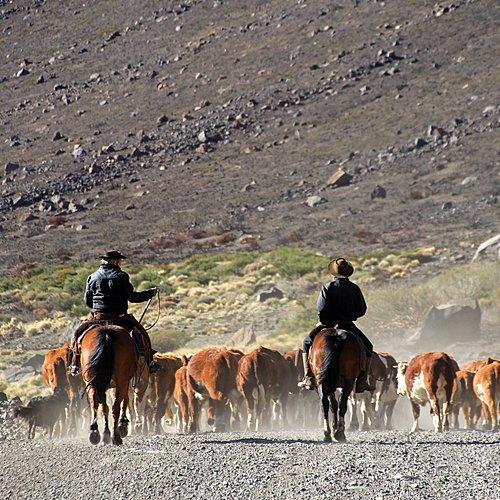 Patagonie rurale, communautés et glaciers - Buenos Aires -