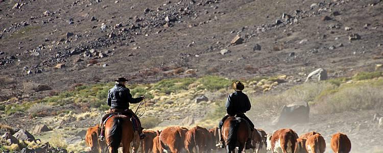 Patagonie rurale, communautés et glaciers