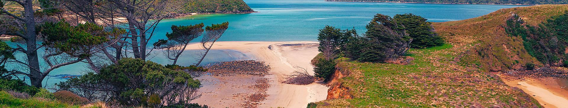 Viaggi nelle isole della Nuova Zelanda