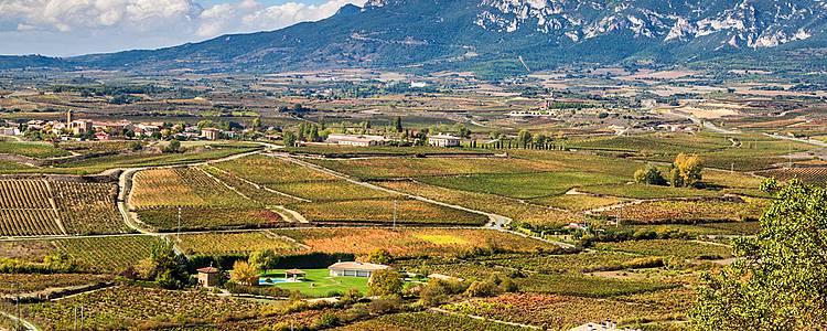 Week-end basque, pintxos i vinos