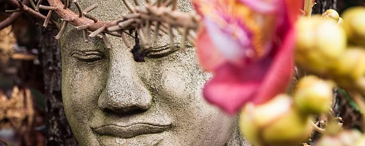 Spettacolare avventura da Phnom Penh a Siem Reap
