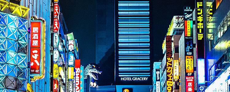 Esplorare i contrasti giapponesi