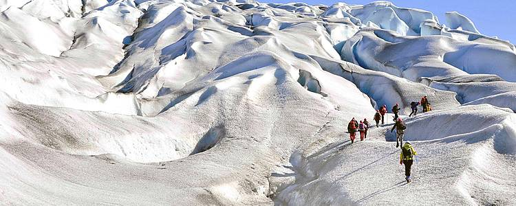 South Greenland Explorer