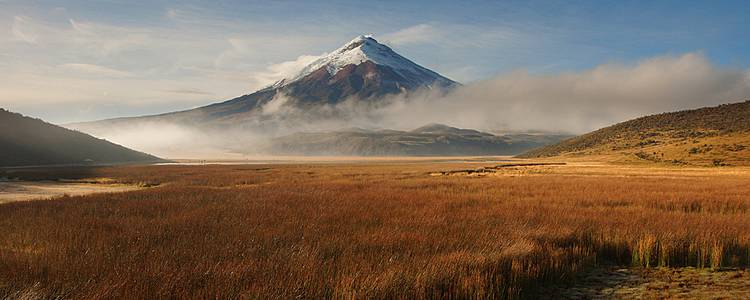 Andean mountains and Amazonian jungles