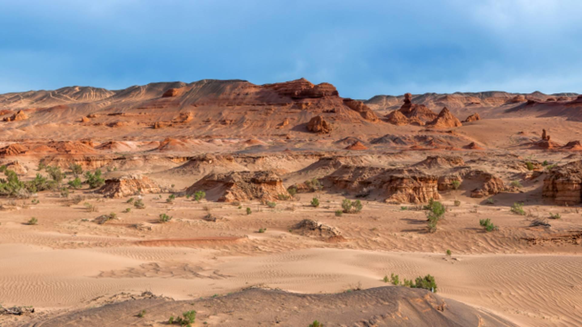 Du désert au steppes