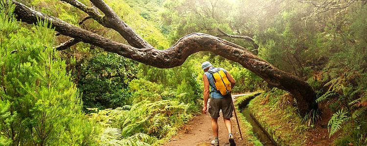 Individuelle Wanderreise über Gipfel und Levadas