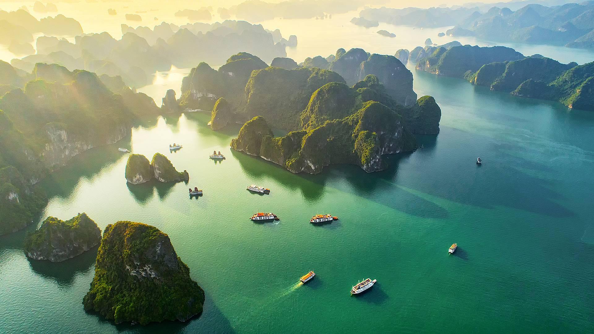 Los imprescindibles vietnamitas