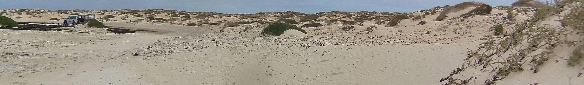 Parc des Dunes de Corralejo