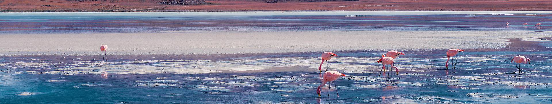 Winter tours in Bolivia